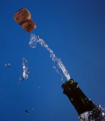 medium_champagne3.jpg